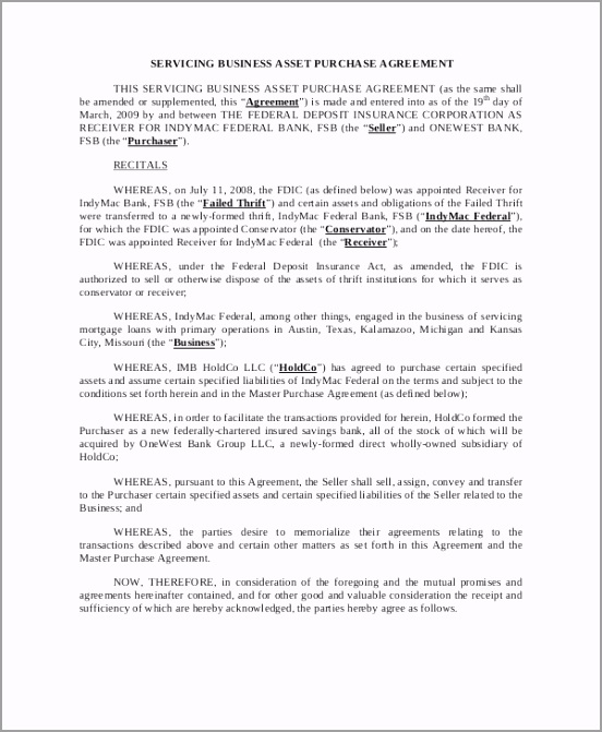 Servicing Business Asset Purchase Agreement Template airui