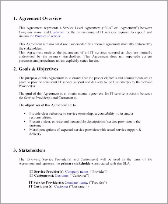 Service Level Agreement Example aeort