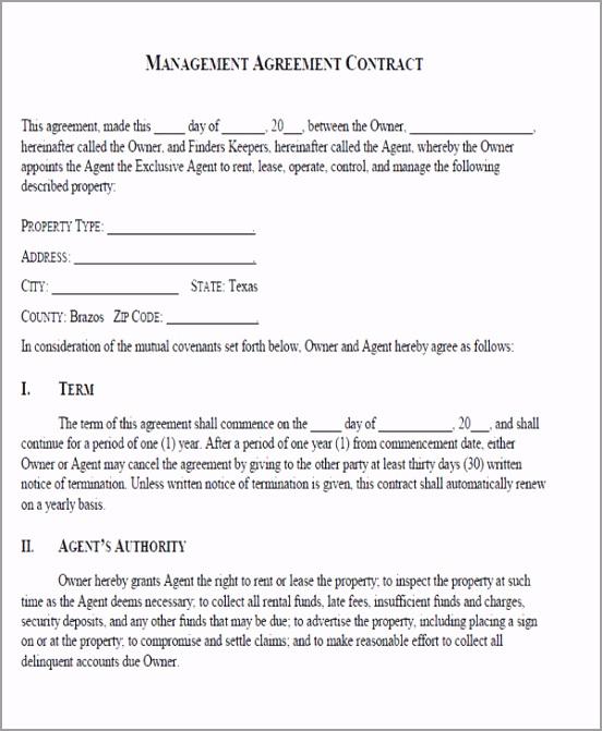 Business Management Agreement Form yreiy