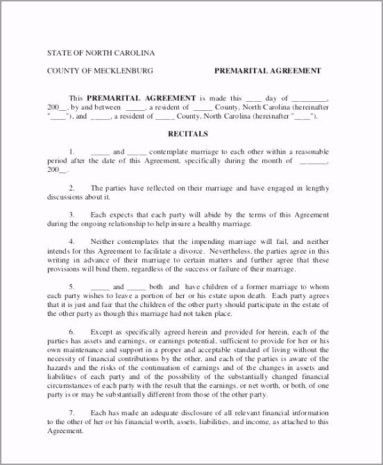 Pre Marital Prenuptial Agreement Sample rfiri