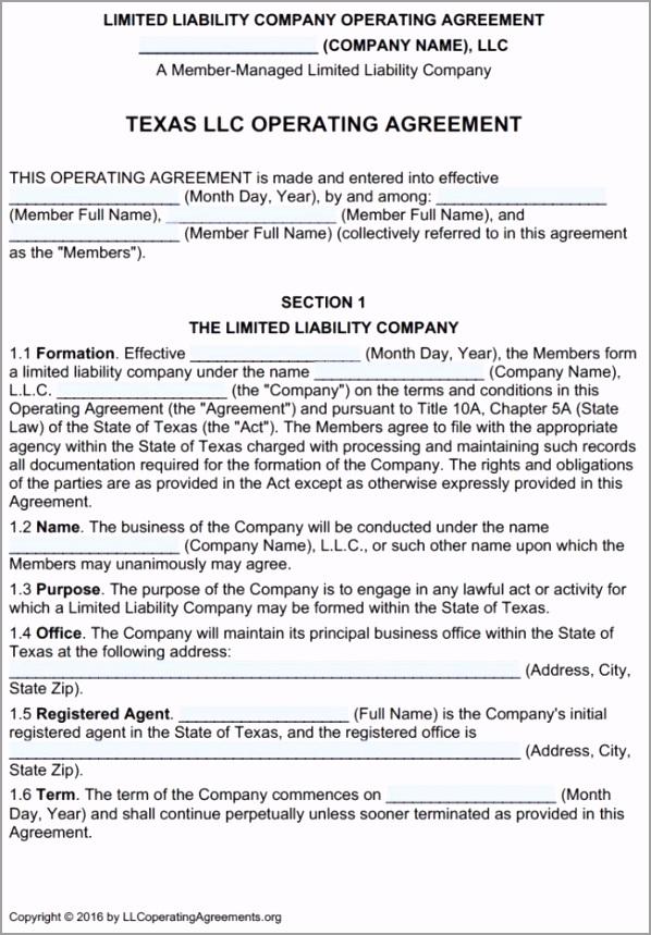 Texas LLC Multi Member Operating Agreement Template 650x934 erygo