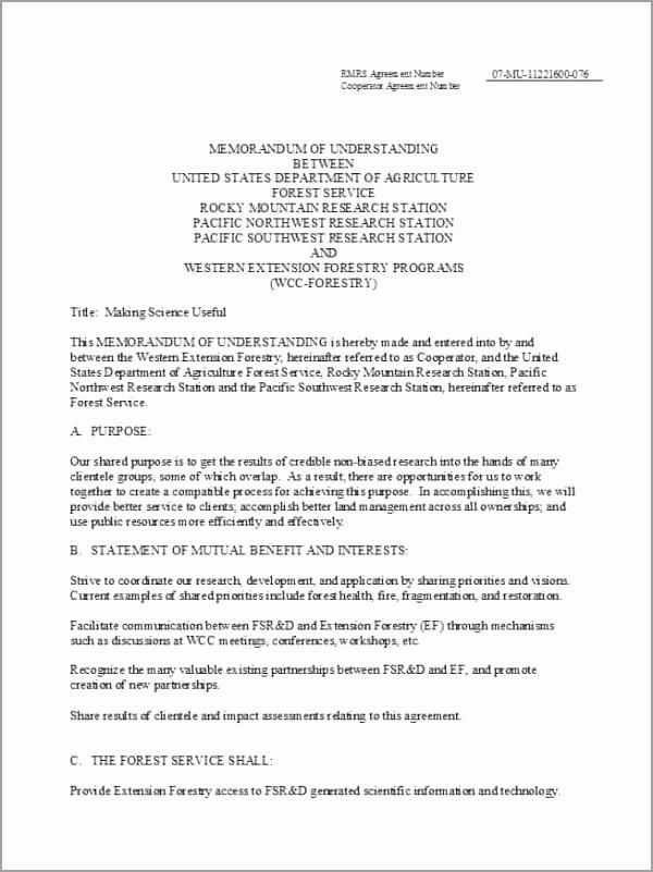 Memorandum of Understanding Template 42 yuotu