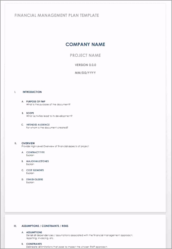 IC Financial Management Plan Template WORD poauu
