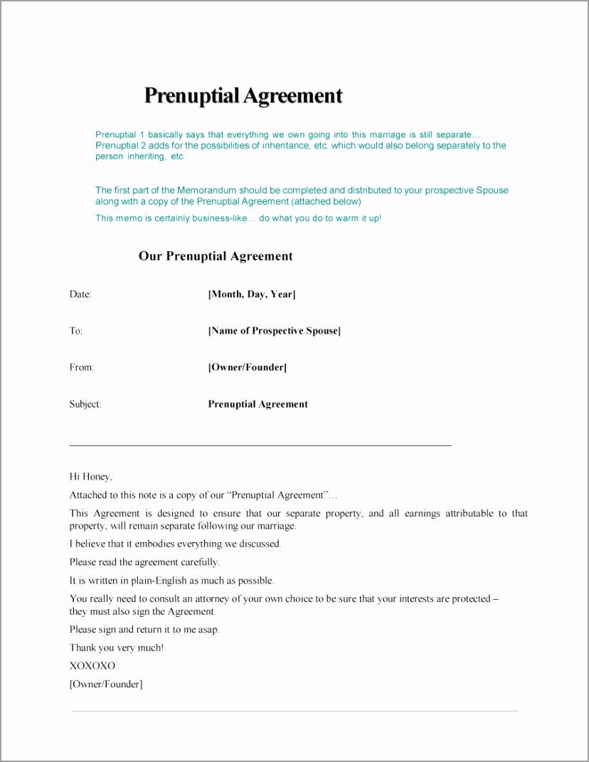 Prenuptial Agreement Template 04 ppoet