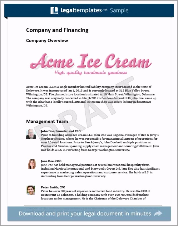 Acme Business plan template enoae
