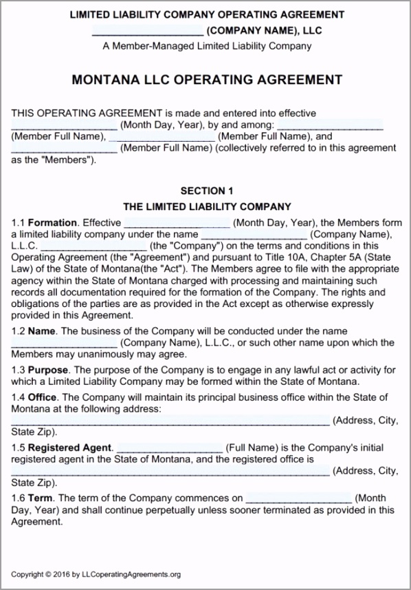 Montana LLC Multi Member Operating Agreement Template 650x932 rwoou