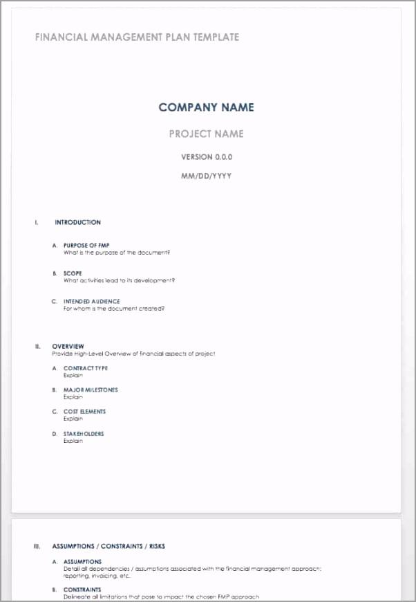 IC Financial Management Plan Template WORD aeunr