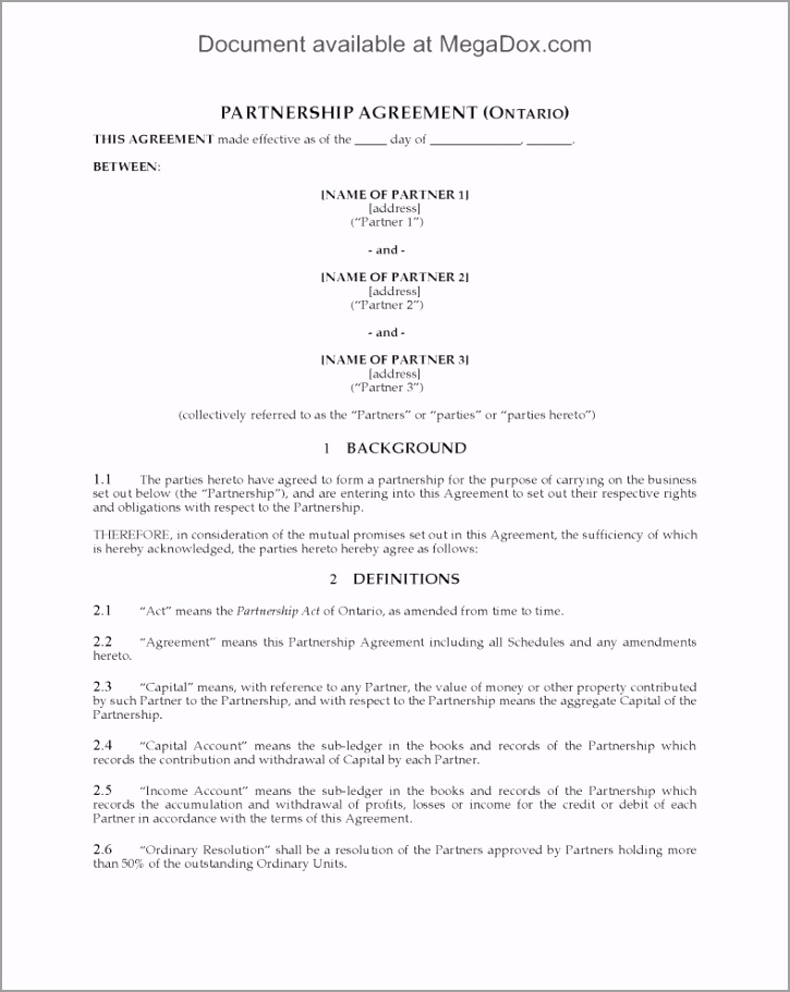 examples of partnership contracts new partnership agreement example irupm