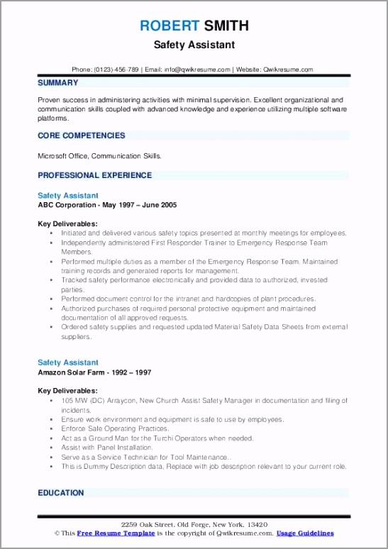 safety assistant pdf rwiye