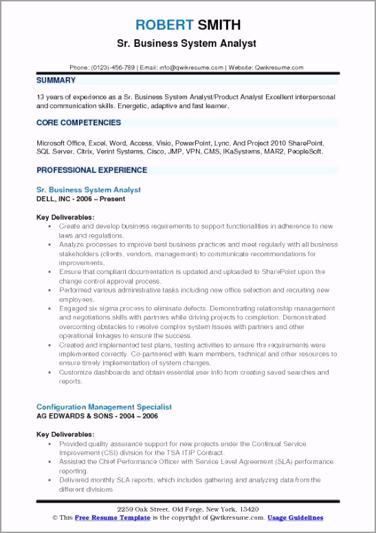 business system analyst pdf rutde