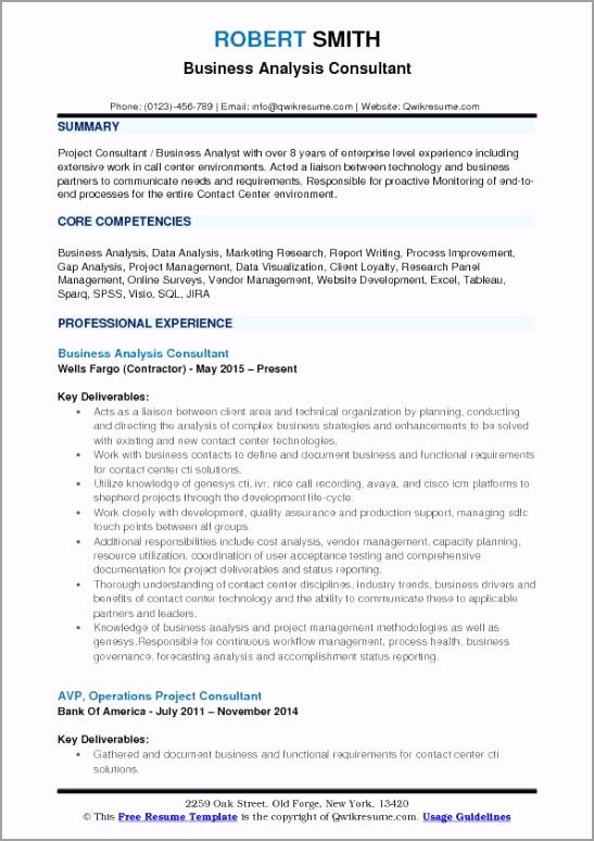 business analyst consultant pdf irwye