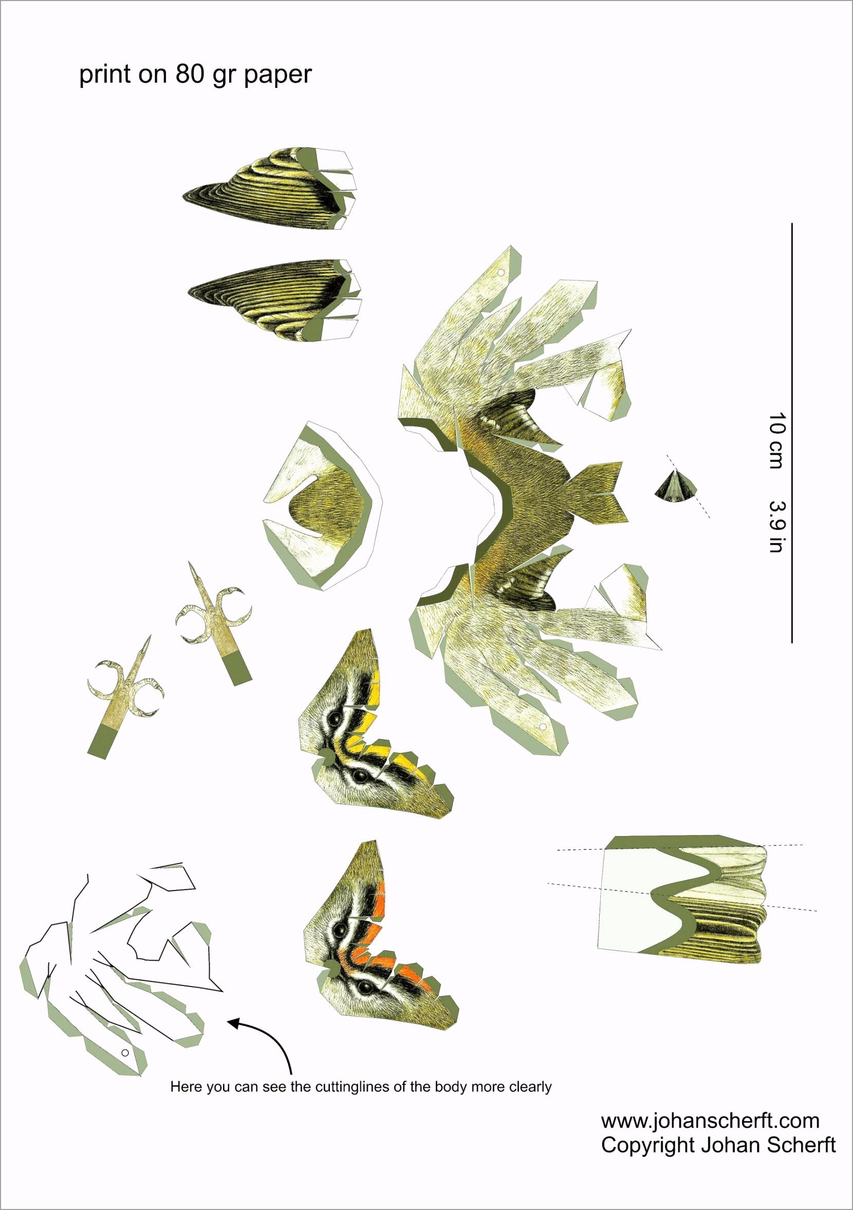 large 3d birds with images bird paper craft paper in 3d bird template yuuri
