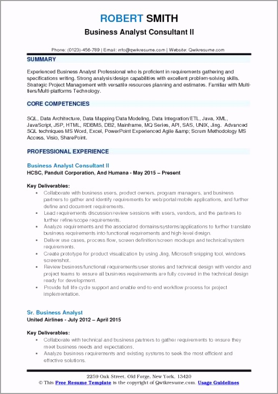 business analyst consultant pdf eewae
