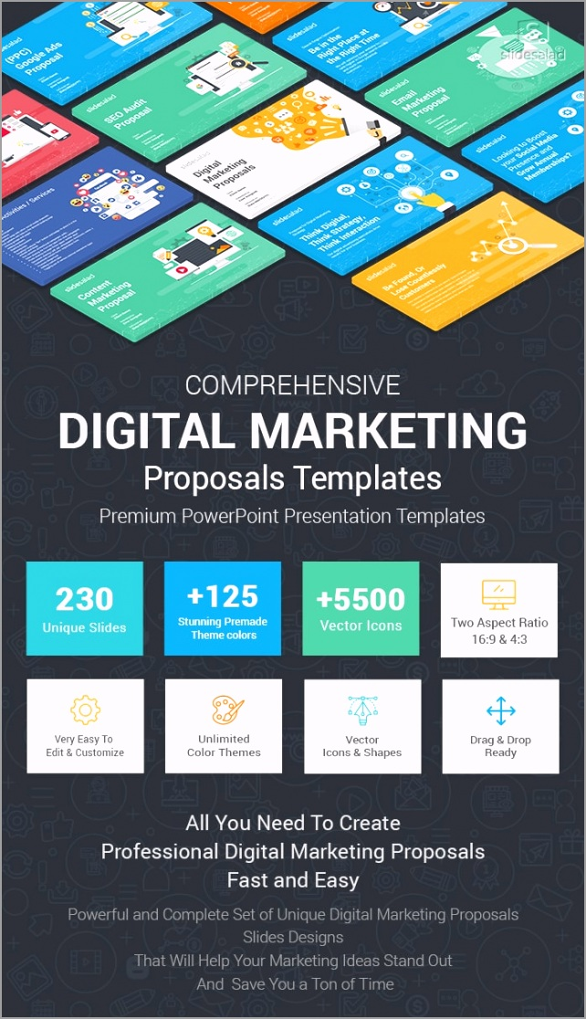 Digital Marketing Proposals PowerPoint Templates For Presentations PPT osprw