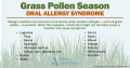 16+ Allergy Trigger And Symptom Table
